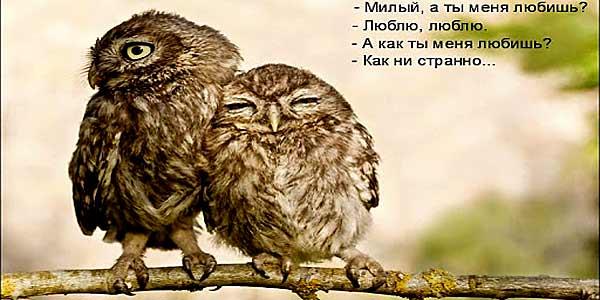 Когда ты меня любишь...